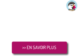 agence web communication nord lille